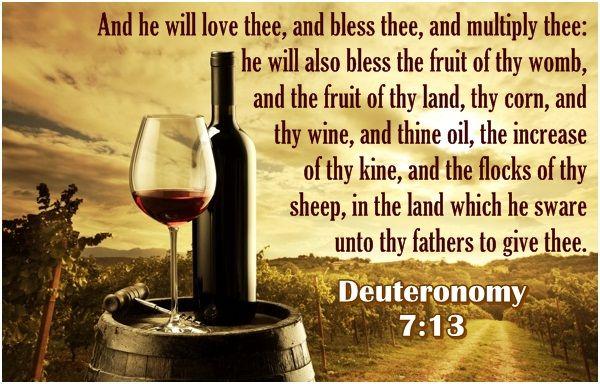 Deuteronomy 7 13 Alcohol Deuteronomy Alcoholic Drinks