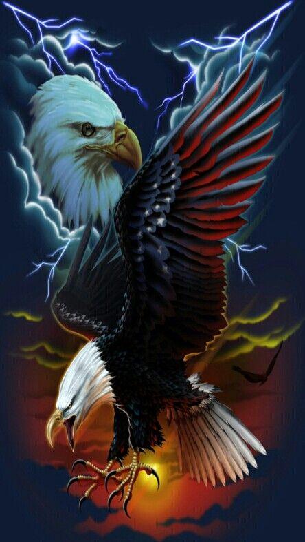 American Eagle Eagle Images Eagle Wallpaper Eagle Pictures