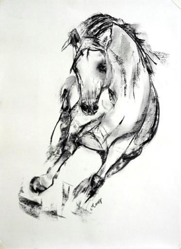 Eclipse maoni dessin au fusain d 39 un magnifique cheval fougeux au galop uvres de maoni en 2018 - Comment dessiner un cheval au galop ...