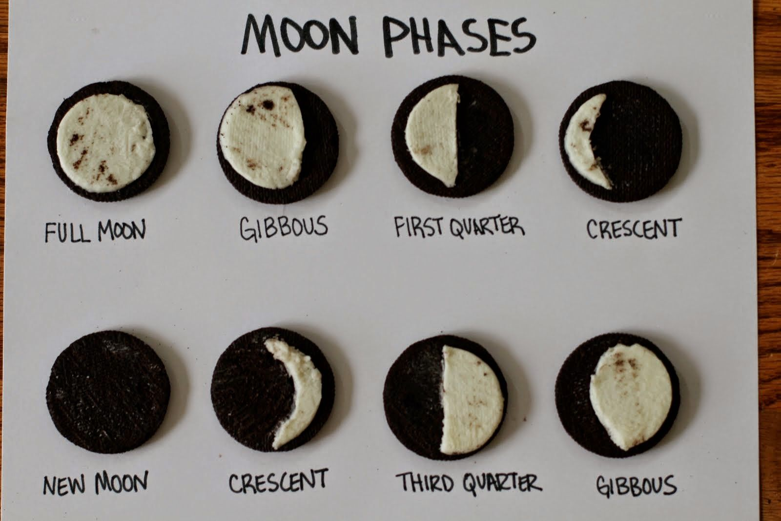 Total Lunar Eclipse And Moon Phases Lesson Ideas