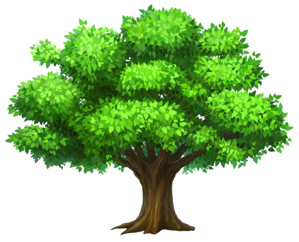 Oack Tree Png Clipart Picture Tree Images Tree Clipart Family Tree Clipart