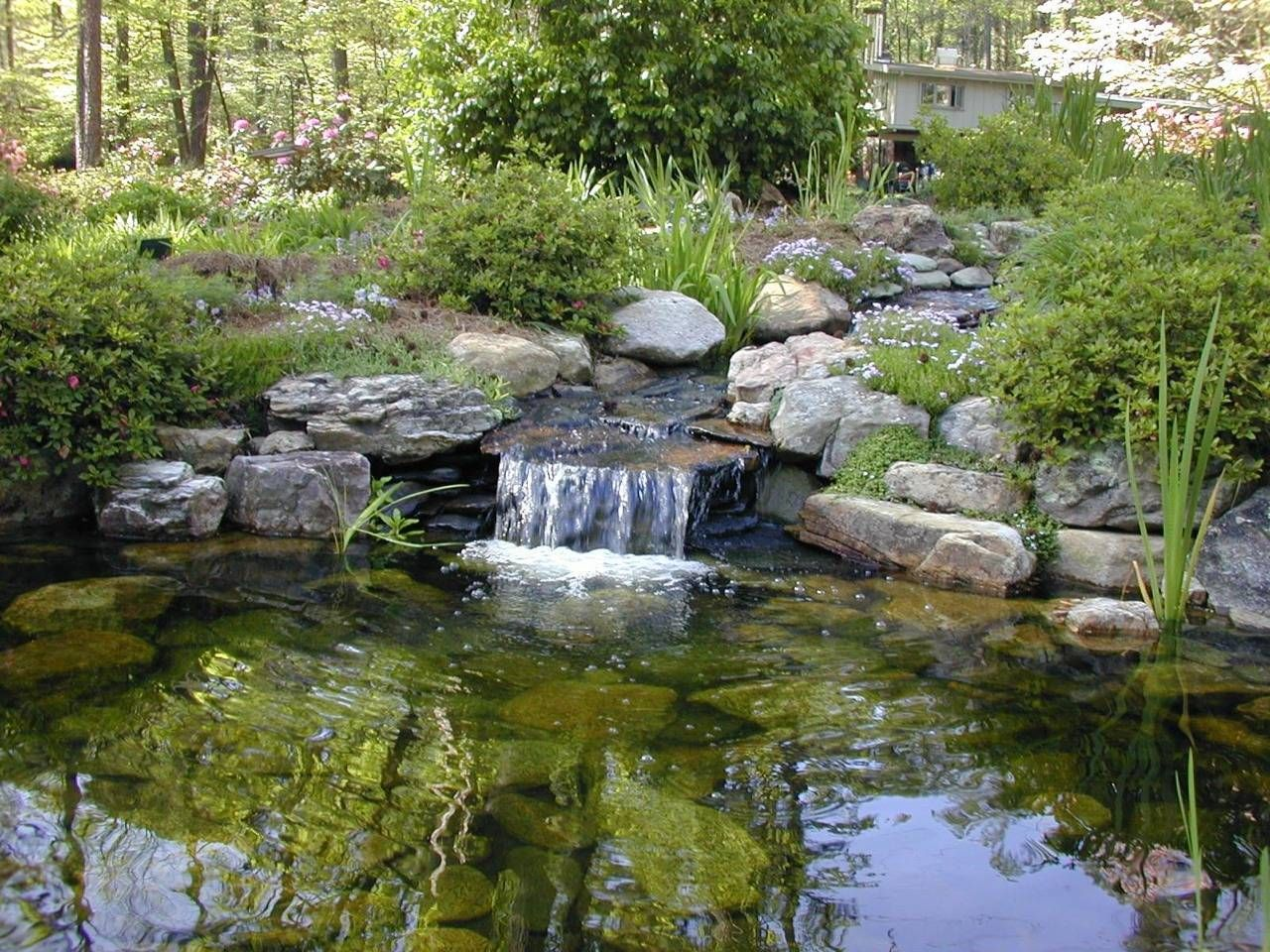 Small koi pond with waterfall pond waterfall for Fish pond fountain design
