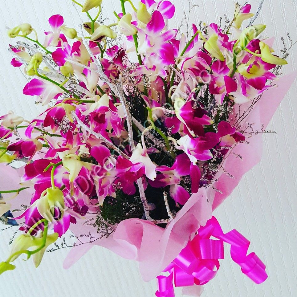 The beautiful tropical alluring purple orchids! floral