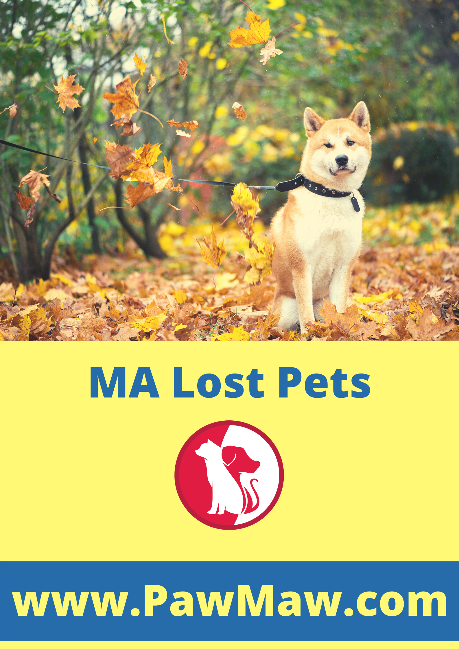 Ma Lost Pets In 2020 Losing A Pet Pets Food Animals