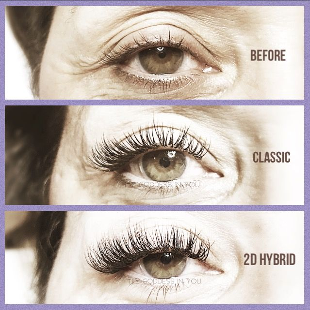 b171afc304e Classic vs. 2D Hybrid | lashes in 2019 | Lashes, Eyelashes, Lash ...