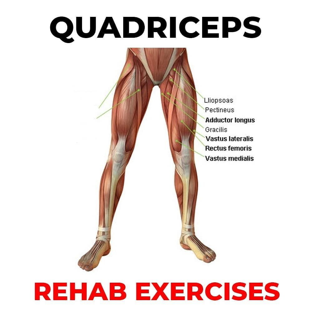 22+ What are your quadriceps inspirations