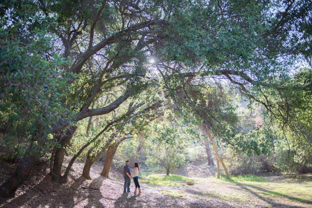 Griffith Park Engagement Photography - Santa Barbara, San Luis Obispo, Los Angeles, San Diego and Orange County Wedding Photographer