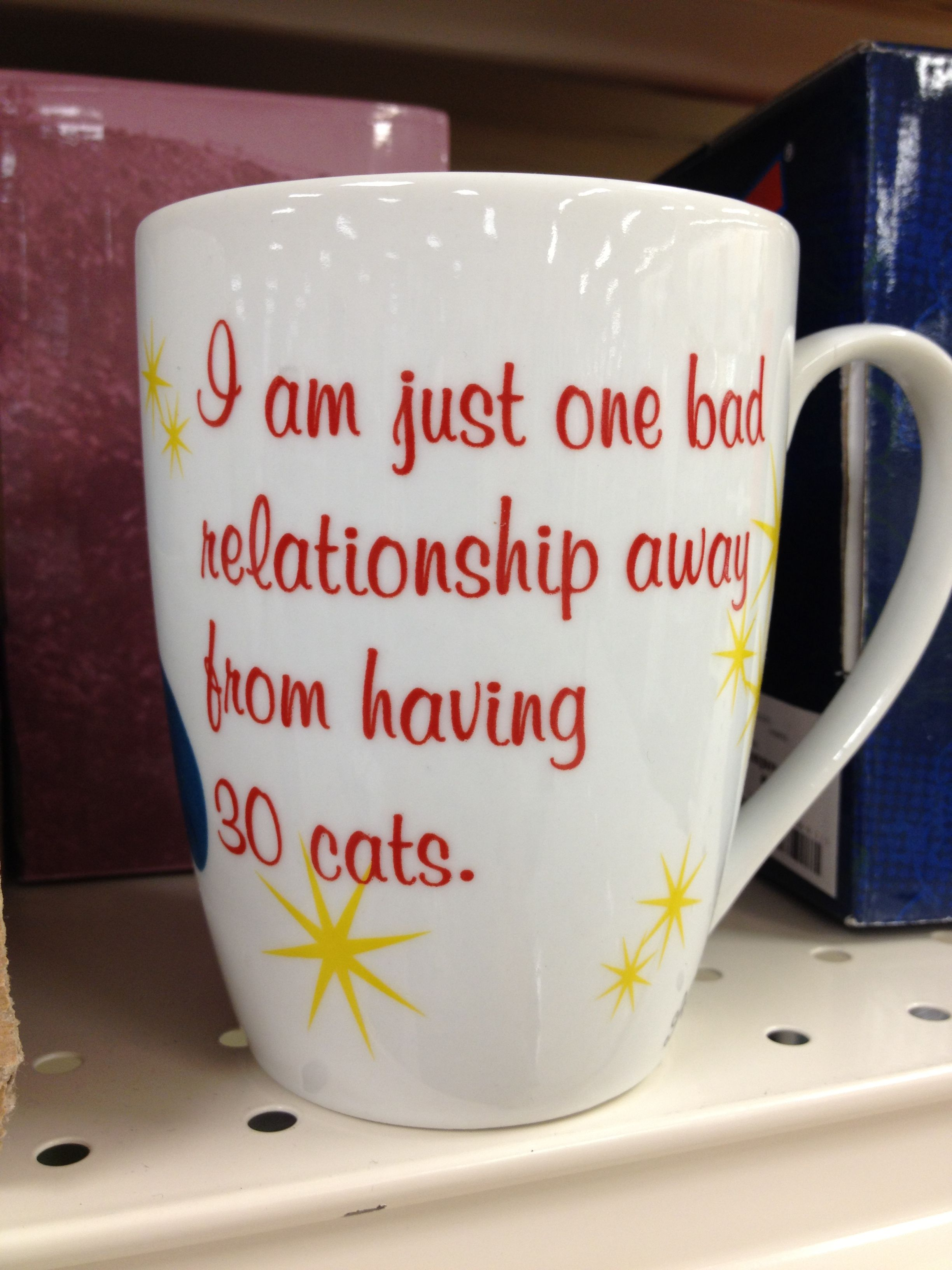 I am just one bad relationship away from having 30 cats.
