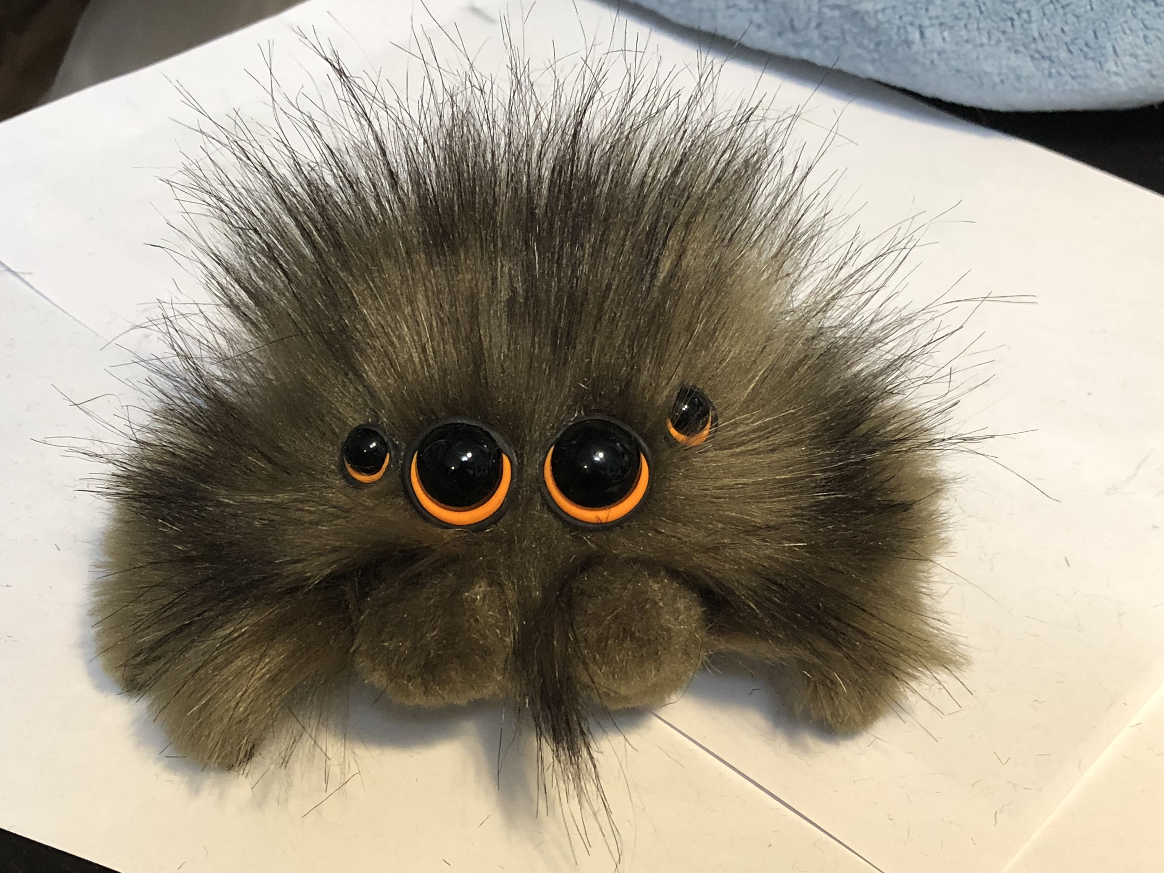 My New Wooly Wookiee Spider Http Etsy Me 2bvejxn Welcome To The