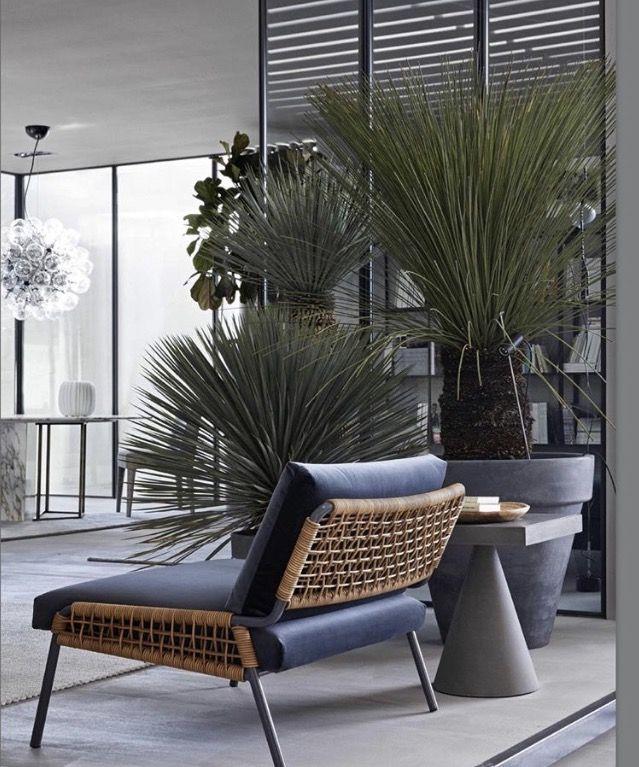 Pin de 妮娜 莊 en furniture | Pinterest | Sillas, Terrazas y Verde