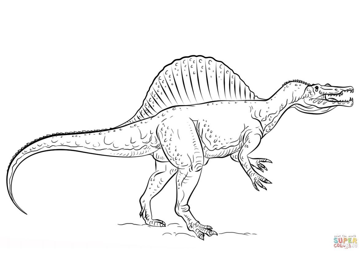 Http colorings co spinosaurus coloring pages coloring