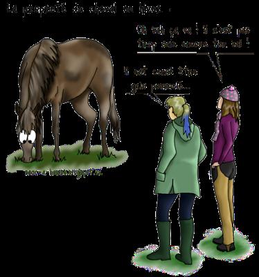 Comment garder son cheval presque propre en hiver nom commun le pr et blogspot fr - Comment garder une vitre d insert propre ...