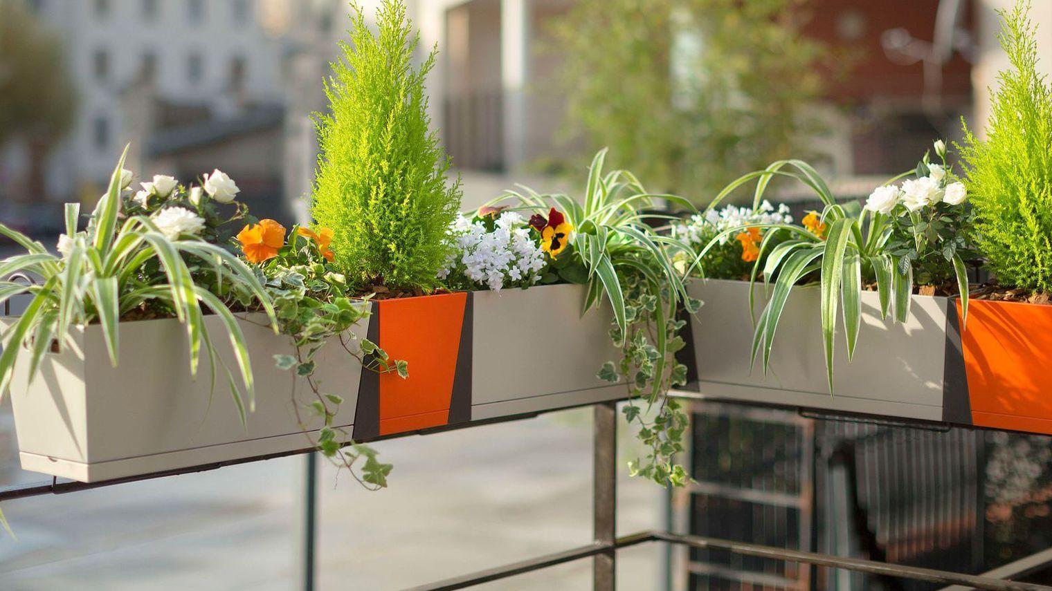 Support Jardiniere Balcon Avec Sapin En Pot Pour Terrasse Awesome