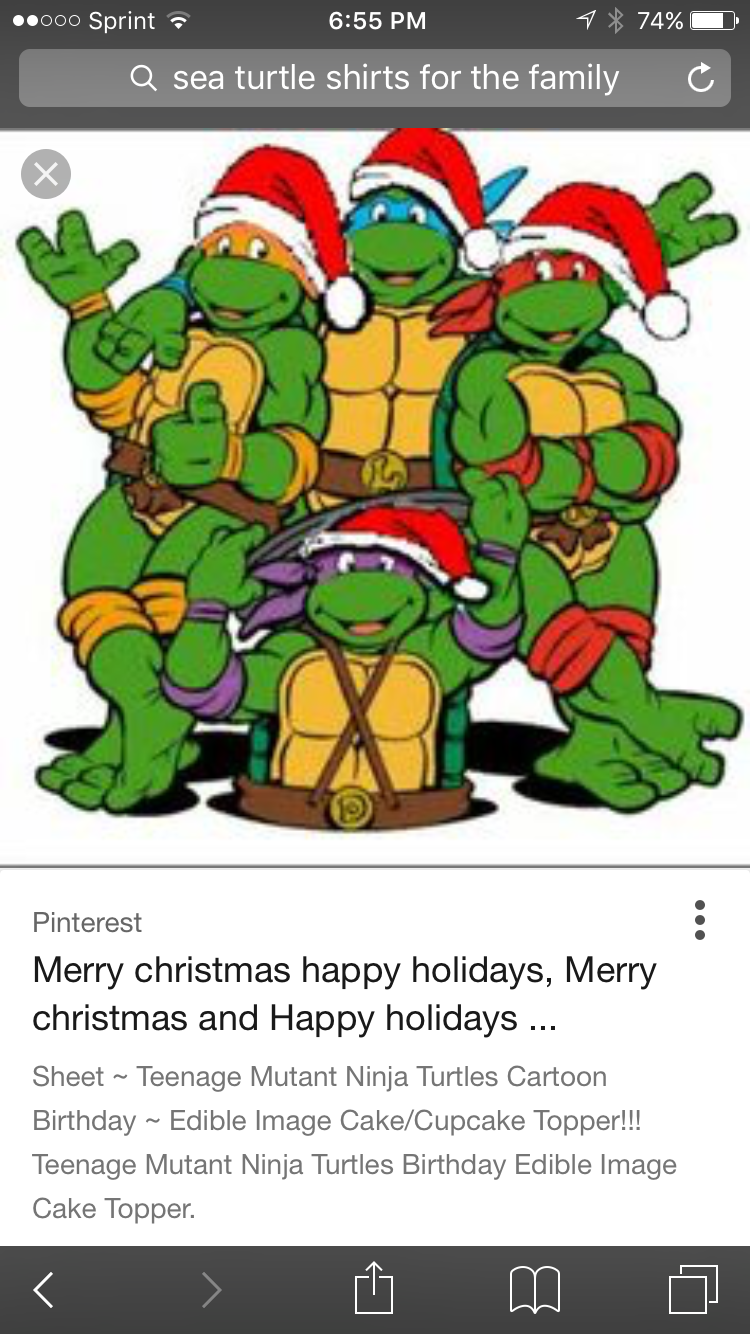 Pin by Rita Carafello on Turtle Christmas | Pinterest | Ninja ...