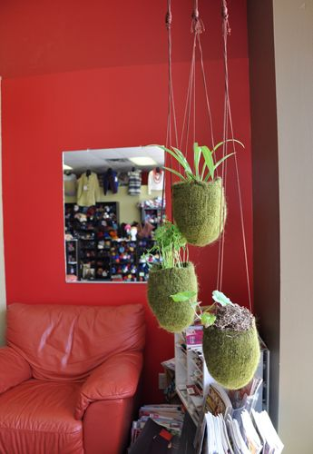 #knitted and #felted hanging planters