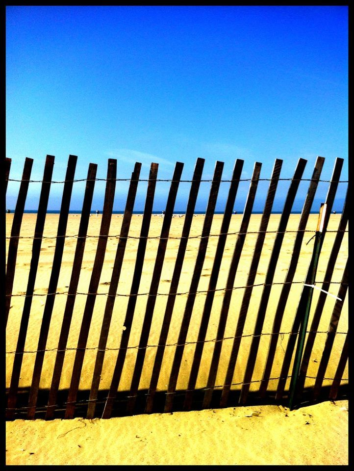 The Fence - I Arted-ParalLax Santa Monica (Frank Rautenbach)