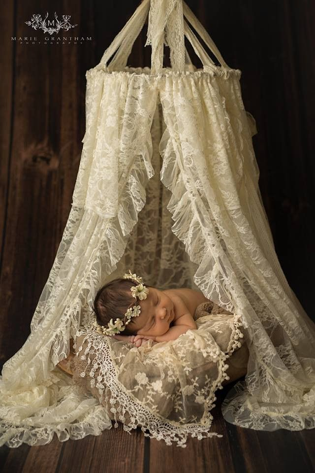 Lace Canopy Photo Prop & Lace Canopy Photo Prop | Canopy Photography and Babies