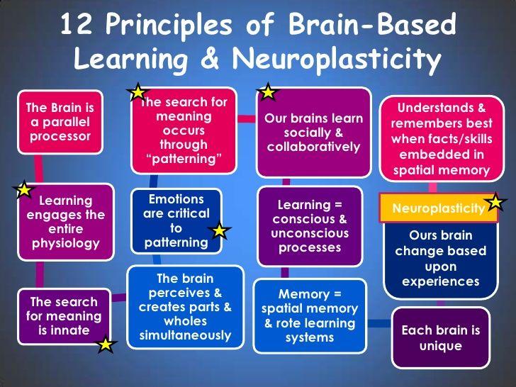 Image Result For Brain Based Learning Brain Based Learning