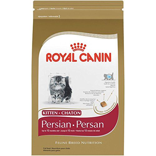 Royal Canin Breed Health Nutrition Persian Kitten Dry Cat Food 3pound You Can Find Out More Details At The Link Of The With Images Dry Cat Food Cat Food