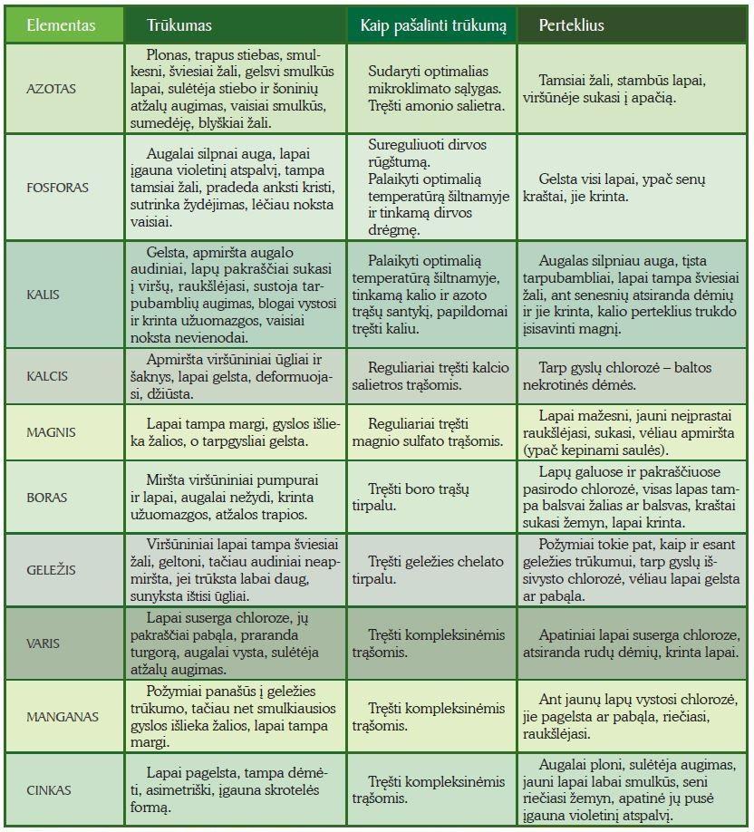 Maisto medžiagų trūkumo ar pertekliaus požymiai pomidorų daiguose