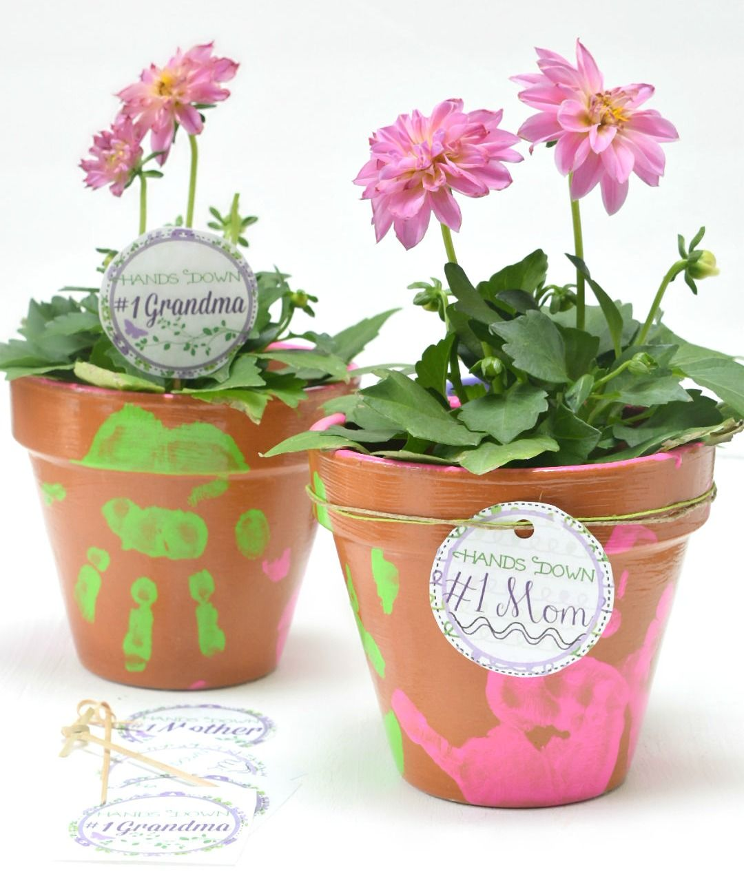 Mother S Day Plant Gift Idea
