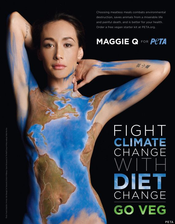 nikita maggie q peta... awesome article on vegetarianism with the Huffington post and Maggie Q