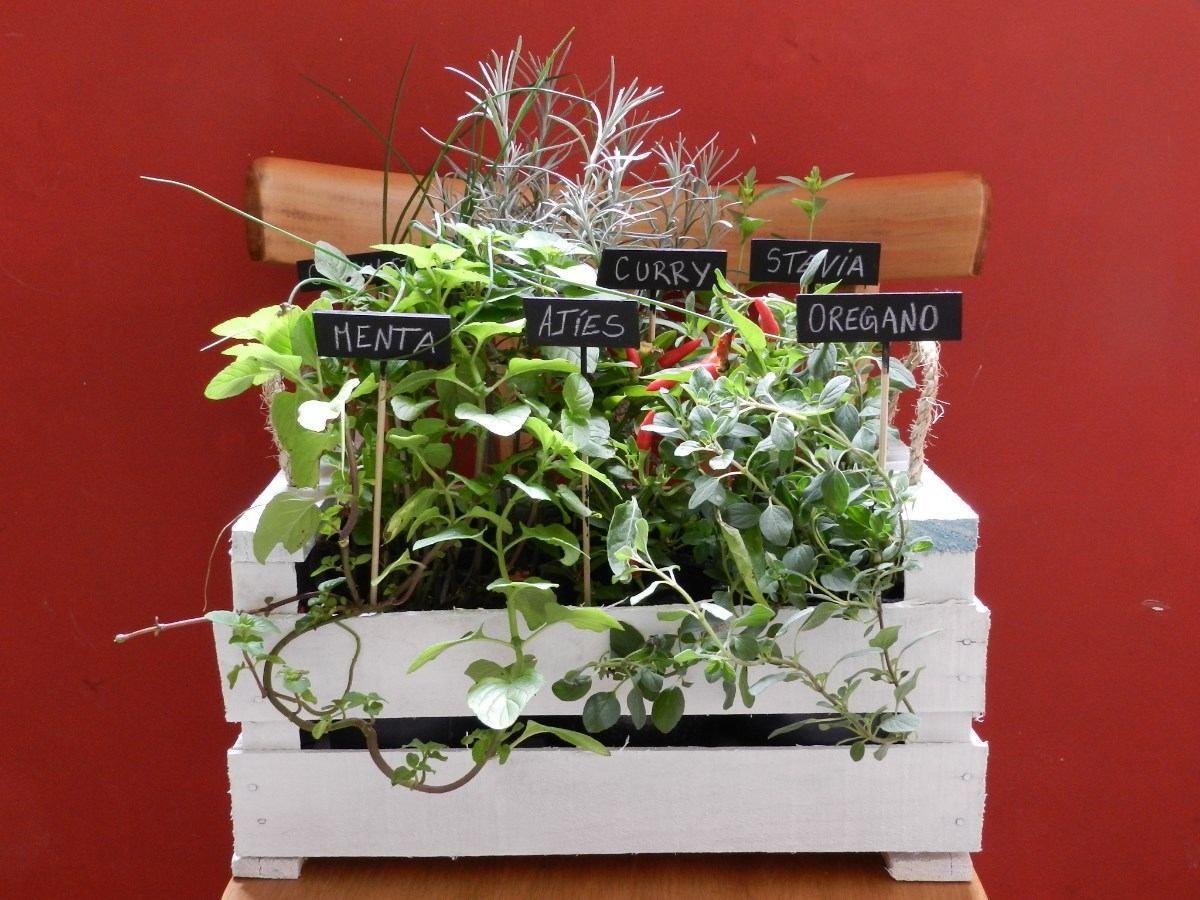 Plantas aromaticas en cajones proyectos para hacer for Jardinera plantas aromaticas