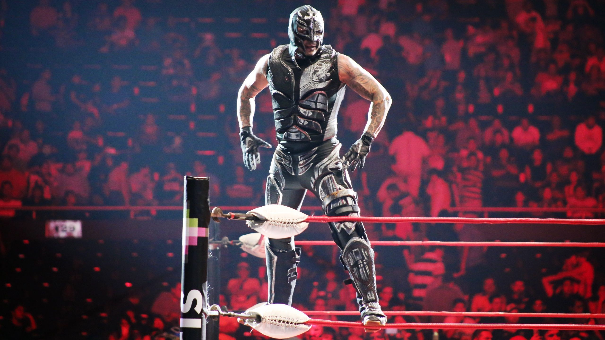 Rey Mysterio HD Images Get Free top quality Rey Mysterio