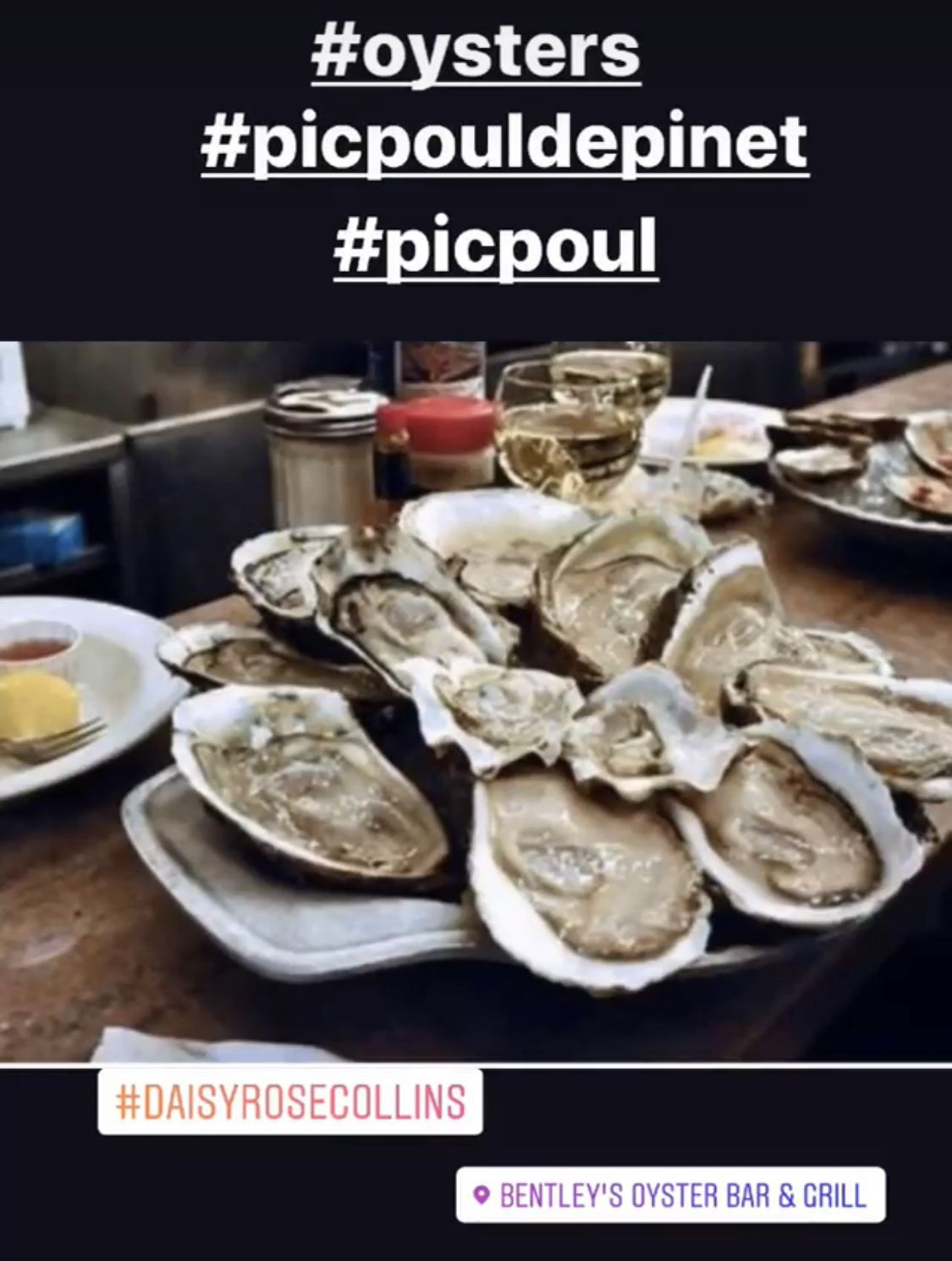 Oysters Bentley's oysters are amazing, great selection & quality really fresh. I like to have mine just as they come with a squeeze of lemon. I usually have the Dover soul there for my main as that's really good, washed down with a nice glass of picpoul. It's a great place with great staff. 😊