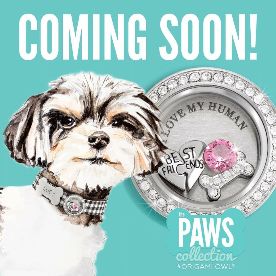Coming soon the paws collection by origami owl dogs collars