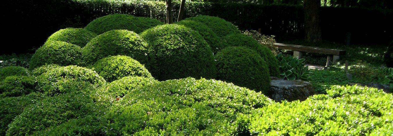 Epic Japanischer Garten Augsburg Originalfoto Eva Lemmer