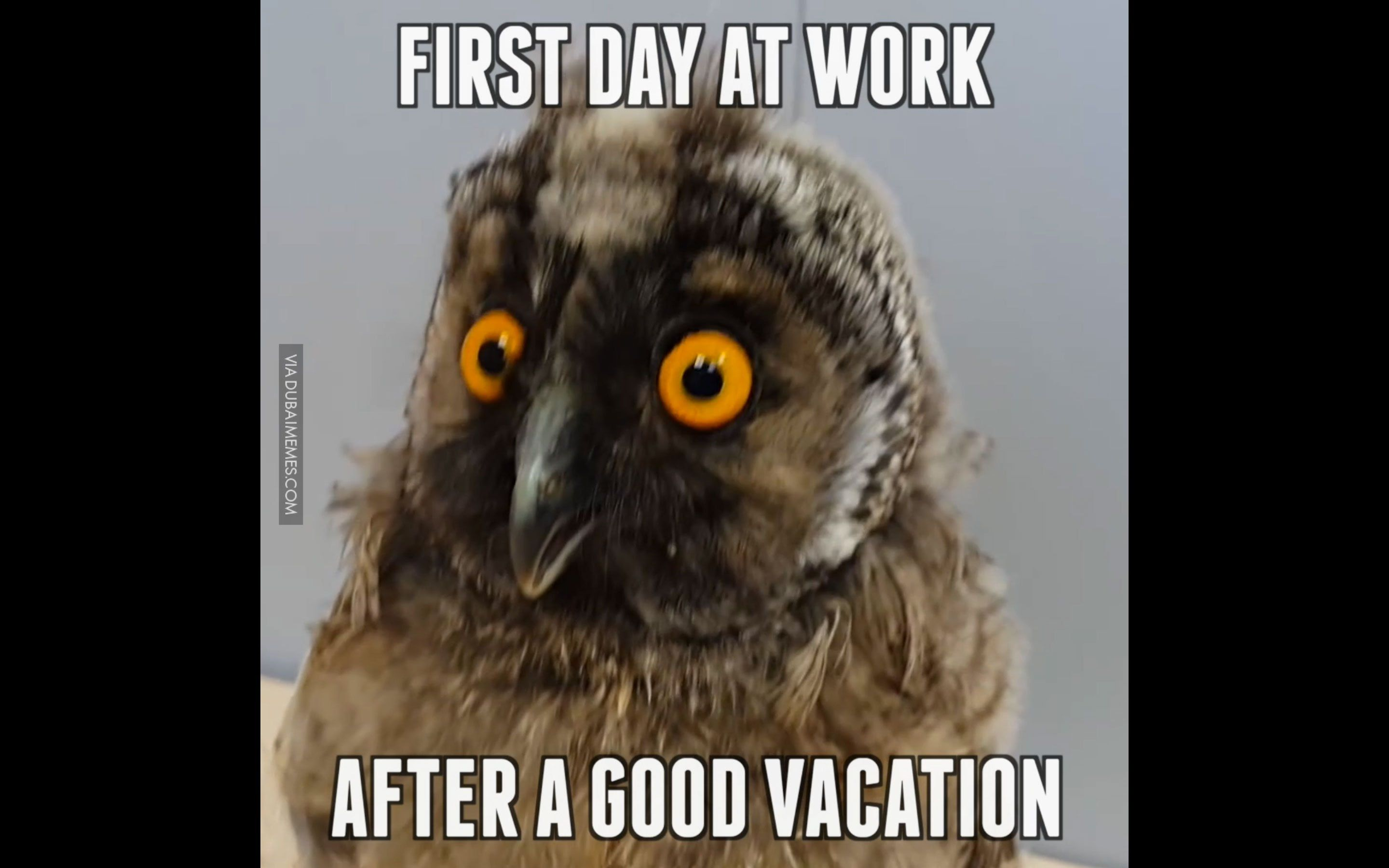 First Day At Work After A Good Vacation Youtube