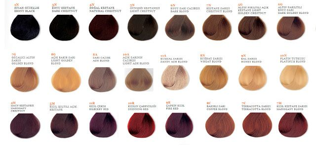 Shoppers hair color ice inebrya shade guide