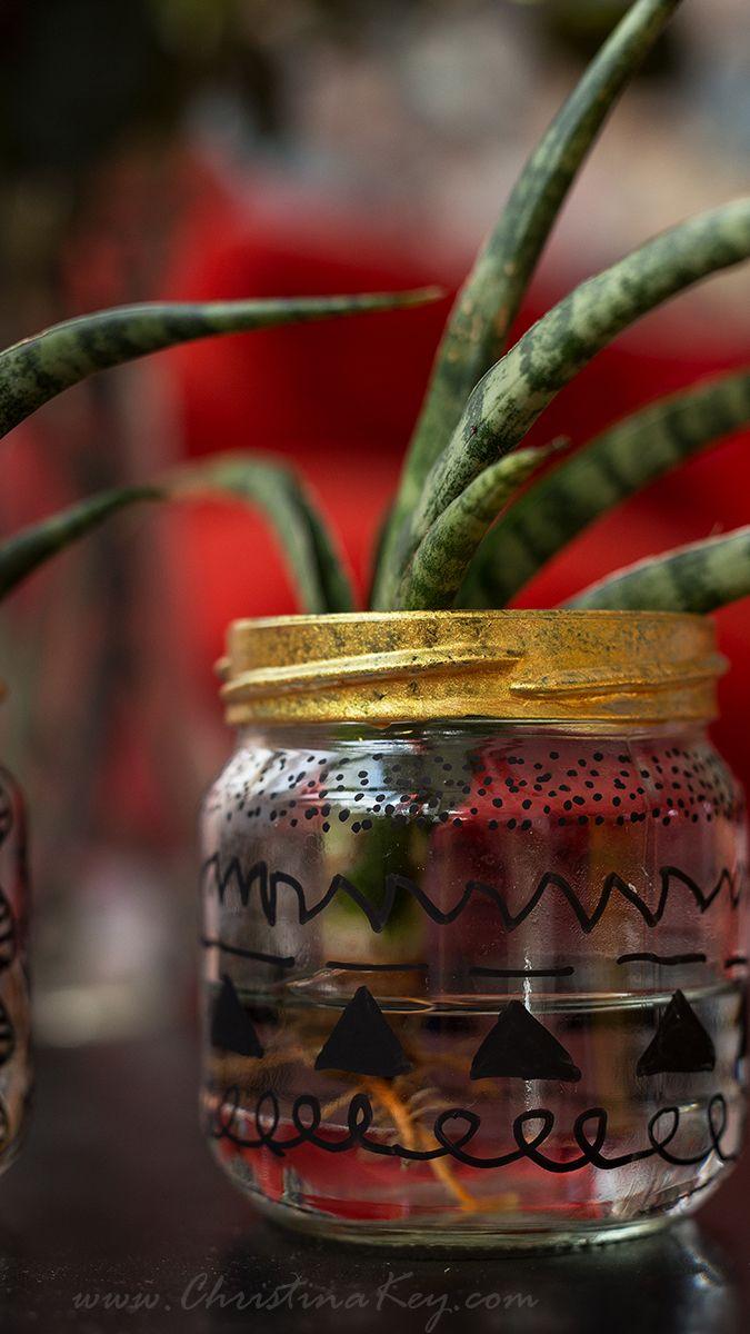 glas upcycling wasserpflanze crafts wasserpflanzen. Black Bedroom Furniture Sets. Home Design Ideas