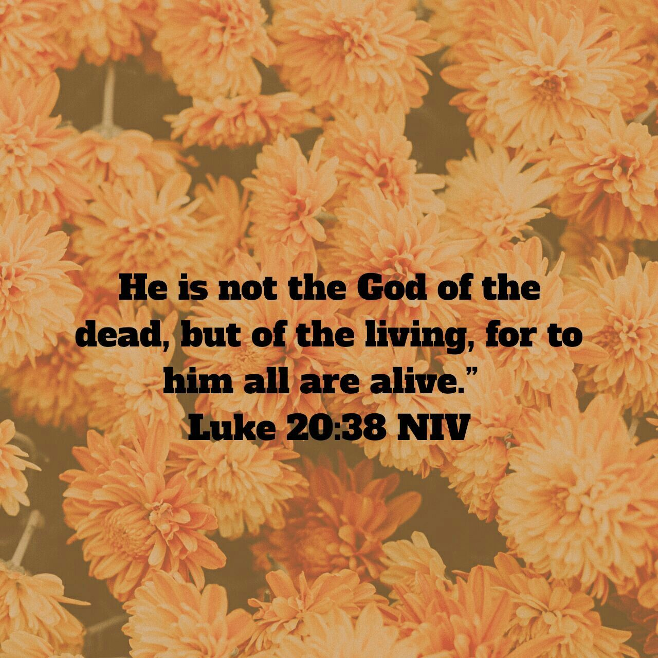 Let us prepare our hearts and minds for the upcoming season of celebration of eternal life, for Jesus dies and rises again for man...Thanks be to Almighty God!