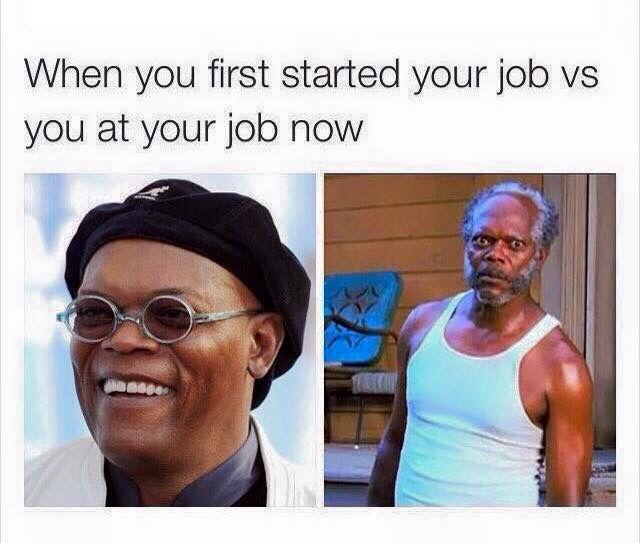 Pin By Michele M On Memes Work Humor Work Memes Humor