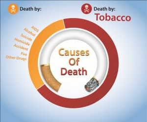 2014 is right around the corner and one of the most important resolutions that we can make is to begin or continue caring for our oral health. Maximum cause of death is Tobacco, So just Say no to tobacco.