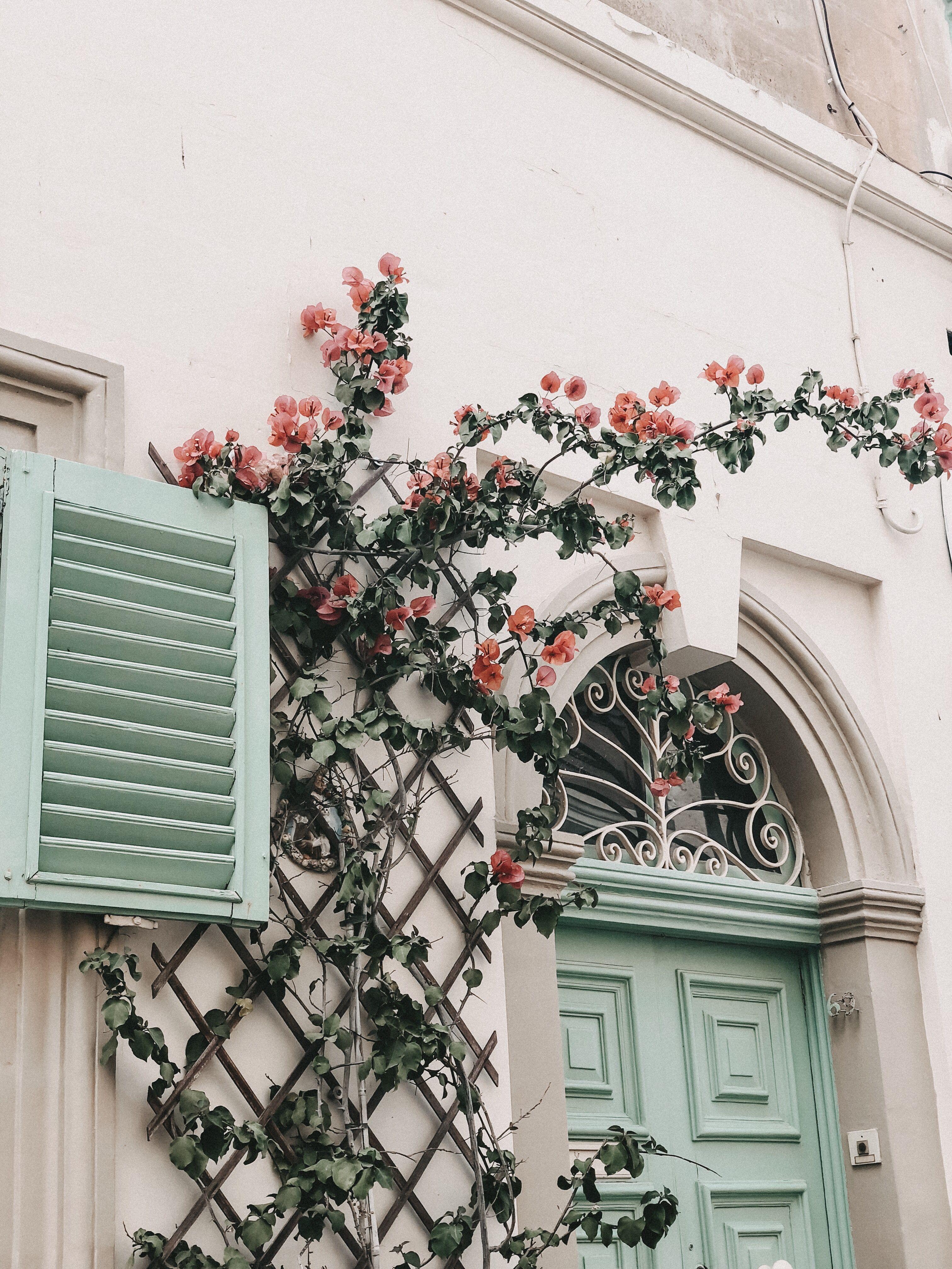 Photo of Mdina Malta