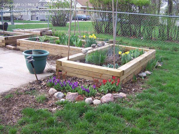 pingl par annick dury sur jardin de poche pinterest jardins et bac. Black Bedroom Furniture Sets. Home Design Ideas