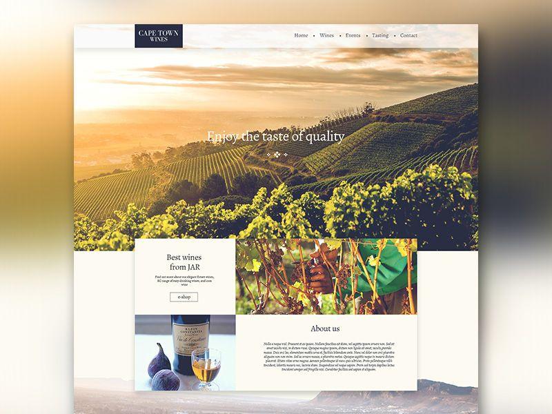 Cape Town Wines Website Web Design Graphic Design Instagram