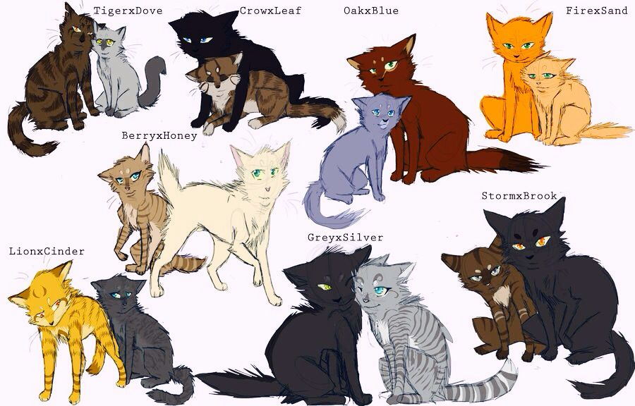Warrior Cats Mates Or Crushesbecause Crowfeather And Leafpool Cant Be