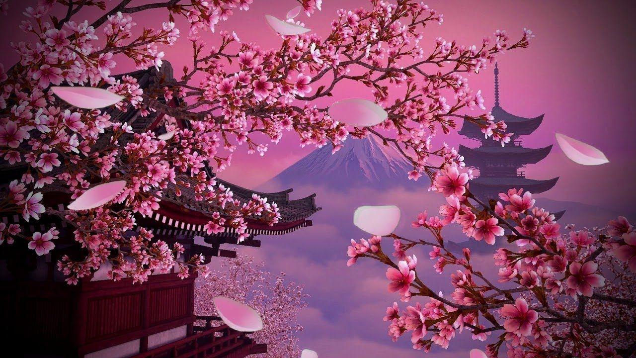 Beautiful Japanese Music For Relaxation Sakura Blossoms Japanese Kot Puzzle Art World Art Relaxing Music