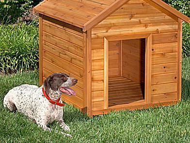 Build a Dog House with e of These 15 Free Plans