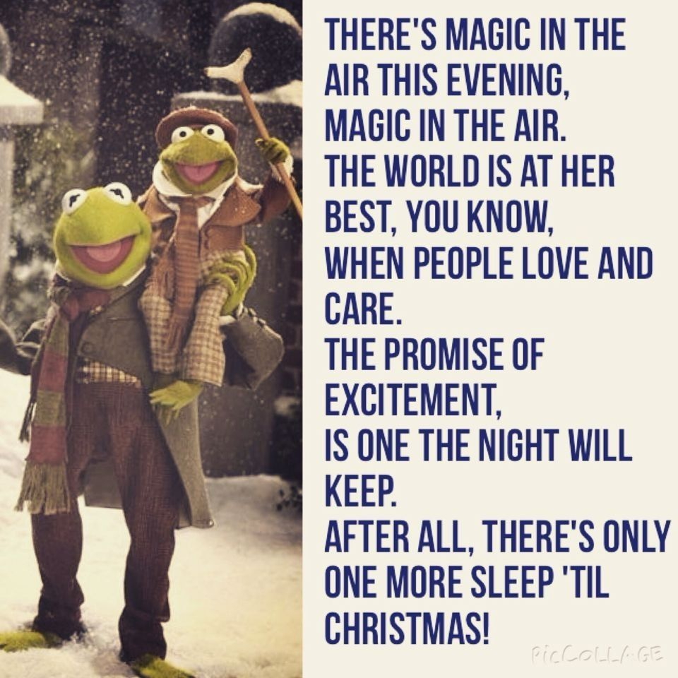 Pin By J D Valens On Muppets Christmas Carol Christmas Humor Super Funny