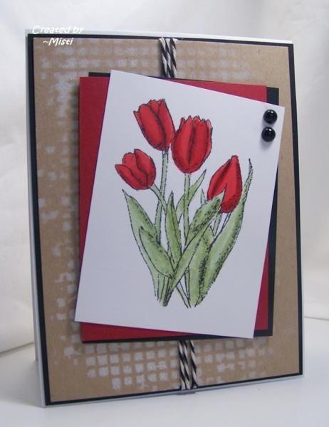 CAS320 Spring Tulips