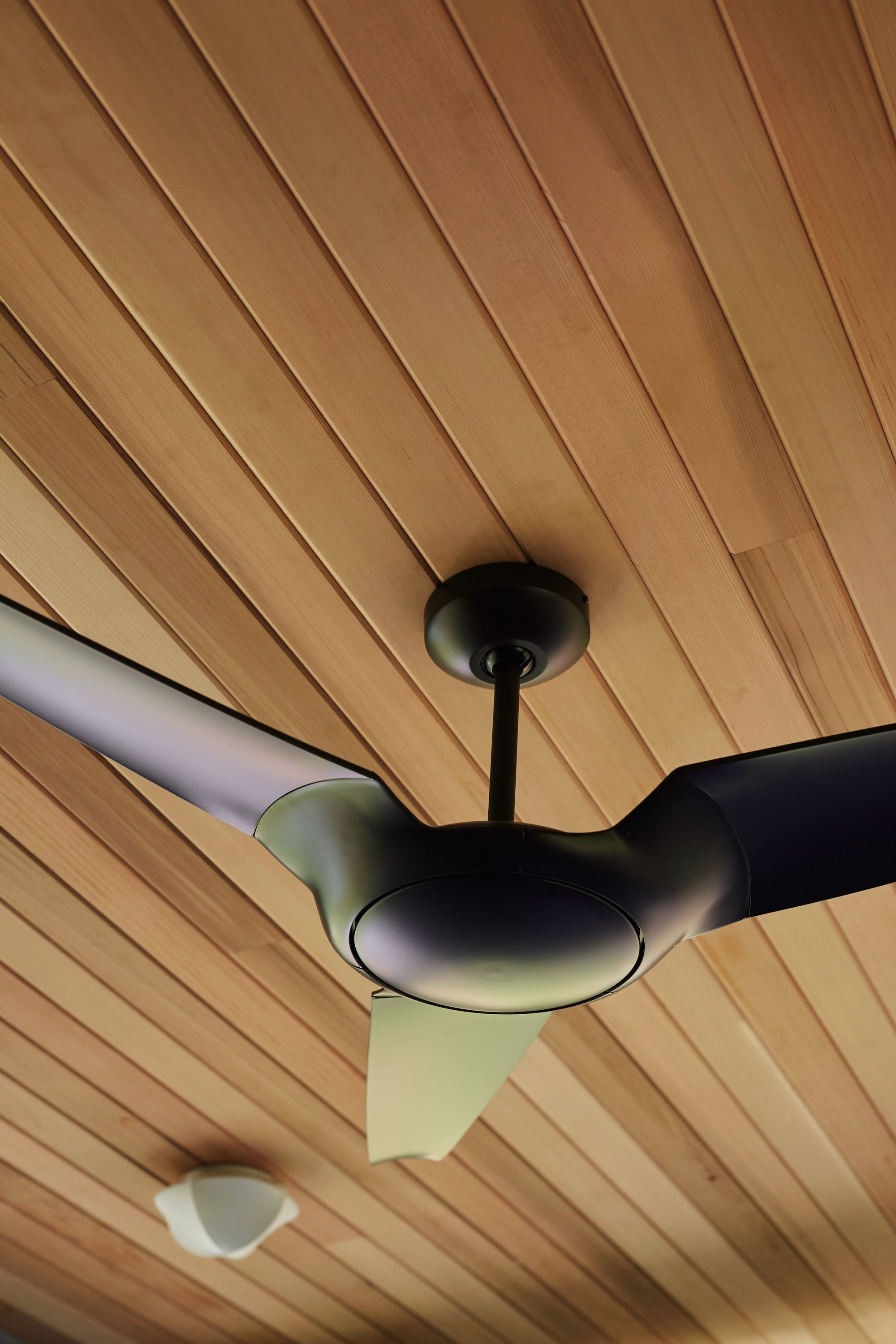 Modern Contemporary Ceiling Fans Pin By The Modern Fan Co On Modern Fan Ic Air3 Contemporary