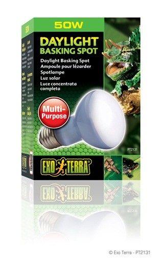 Bombilla Daylight Basking Spot Exoterra Bombillas Luces Solares Y Fotosintesis De Las Plantas