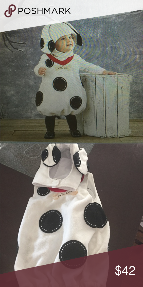 Pottery barn kids baby puppy costume Adorable puppy costume. My son wore this one time  sc 1 st  Pinterest & Pottery barn kids baby puppy costume | Pinterest | Puppy costume ...