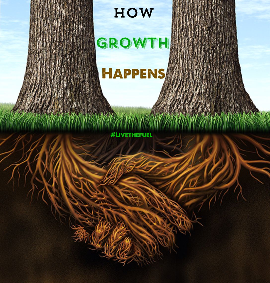 How growth happens.