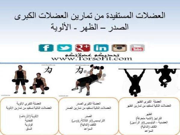 تمرين العضلات الكبيرة وعلاقتها بالعضلات المتوسطة والصغيرة Fitness Body Health Fitness Fitness